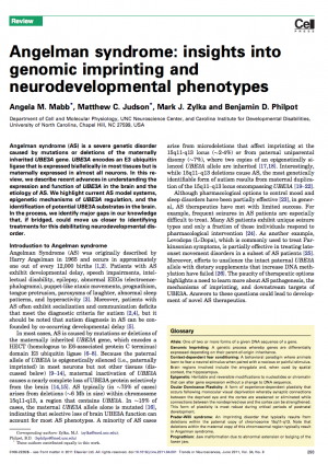 neurodevelopmental phenotypes Screen Shot 2019-03-12 at 12.29